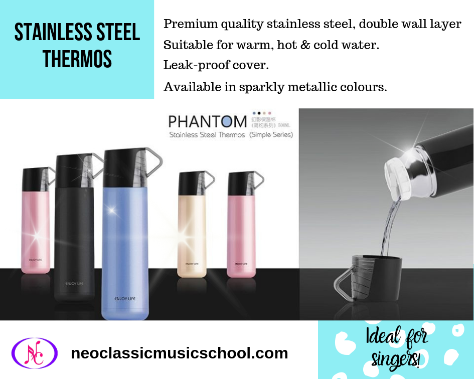 Stainless Steel Thermos (1)